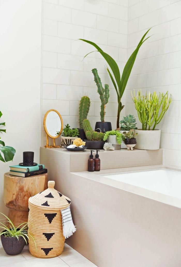 baignoire en beige et blanc décorée avec des cactus et aloe vera, style d'aménagement de salle de bain exotique, carrelage blanc, carrelage briques blanches pour les murs, plante interieur ombre