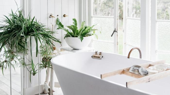 baignoire blanche, deux pots blancs avec des plantes vertes, plante retombante, plante pour salle de bain, murs peints en blanc, grandes fenêtres-portes de balcon aux cadres blancs