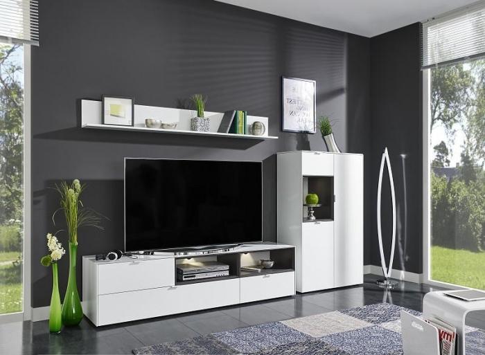 déco de salon avec plantes vertes comme un exemple de couleur qui se marie avec le gris, meubles blancs dans pièce sombre