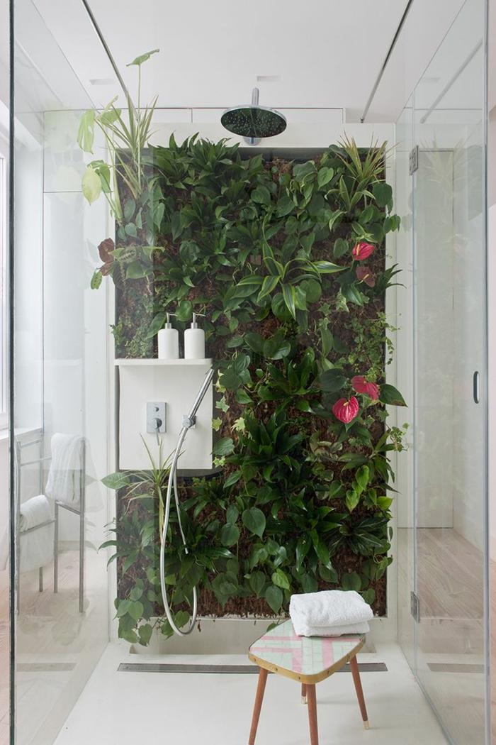 plante tombante, plante interieur ombre, mur végétal dans une douche italienne, ambiance tropicale, plante retombante, salle de bain verte