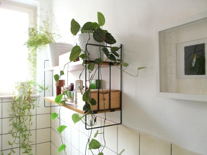étagère porte-plante en métal noir et bois clair, murs blancs et dalles de carrelage en ivoire, tableau au cadre blanc, plante grimpante interieur
