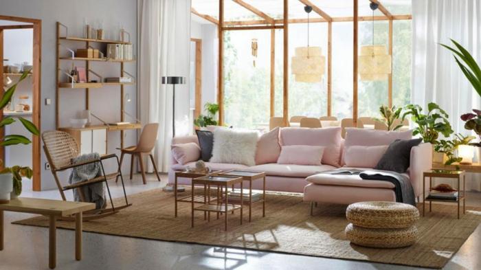 tapis beige, sol en béton, petites tables basses, bureau avec étagère, plusieurs plantes vertes