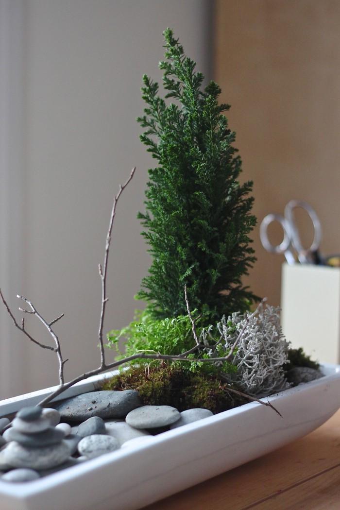 mini plante verte pour deco jardin zen miniature de bureau japonais