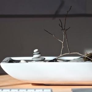 Jardin japonais miniature – un concentré du monde