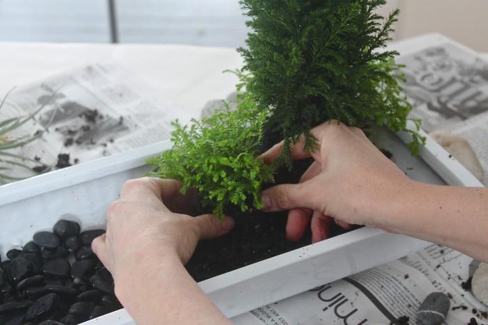 fabriquer mini jardin japonais d intérieur pour décoration de bureau tuto