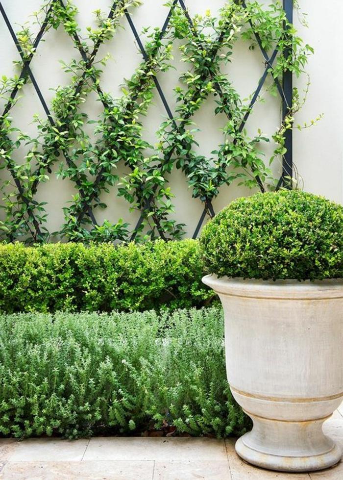 habiller un mur exterieur en formes métalliques noires, formes de losanges sur lesquels on observe des plantes rampantes, revetement mural exterieur de jardin, coin vert et paisible