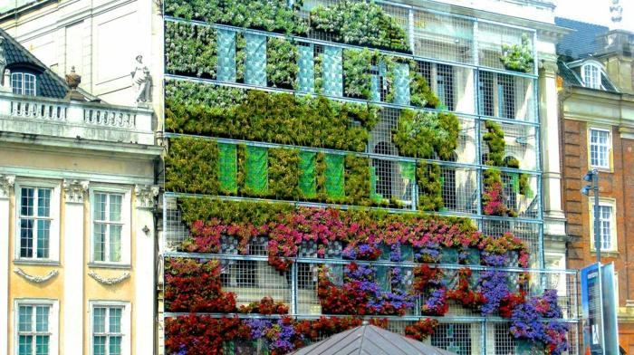 culture verticale sur un grand édifice résidentiel, plantes rampantes sur des cadres métalliques en aluminium, plantes vertes, violettes, jaunes et rouges, tapis mural végétal