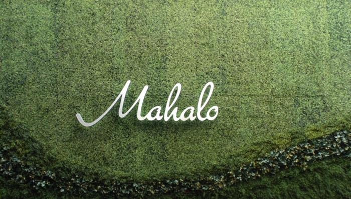 mur végétalisé avec une inscription en métal aluminium Mahalo, mur vegetal exterieur avec inscription nom de l'édifice, motifs ondulants en deux nuances différentes du vert