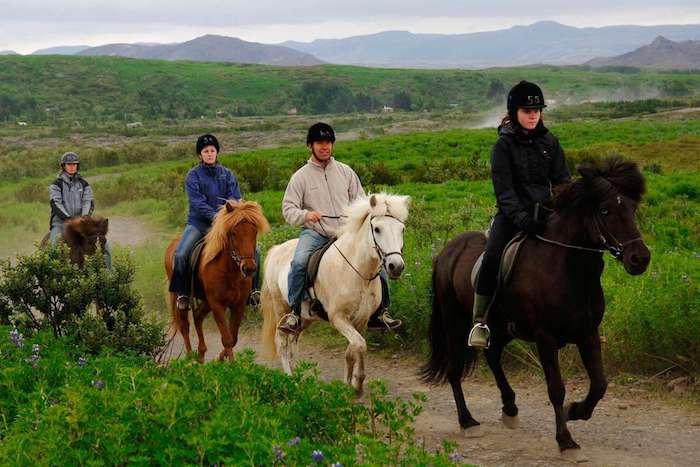 La meilleure idée cadeau grand père cadeau personnalisé homme cadeau luxueux promenade avec cheval