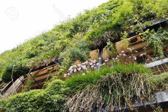 mur vegetal en palette, culture verticale, immeuble avec la façade couverte de vert et de fleurs roses, des balcons bien isolés du bruit et des regards indiscrets