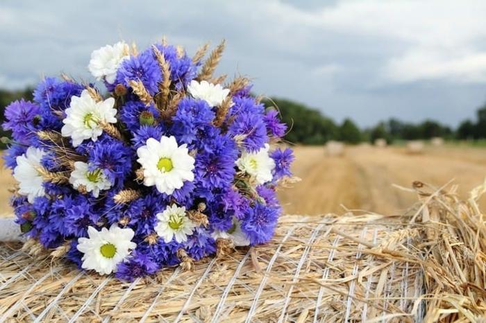 paquerettes et bleuets assemblés en petit bouquet rond, bouquet de mariée rustique