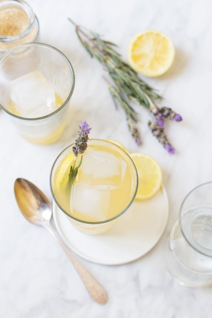 boisson fraîche préparée à domicile avec eau froide et fruits, verre cocktail garni de tranches de citron et feuilles