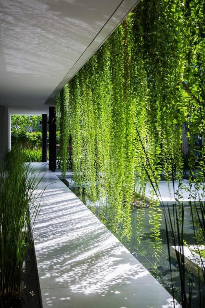 brise vue végétal et naturel fait de plantes tombantes et pendantes