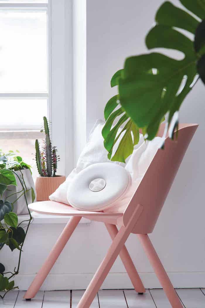 Quelle couleur associer au rose poudre deco rose poudré tendance couleur chaise rose et plante verte