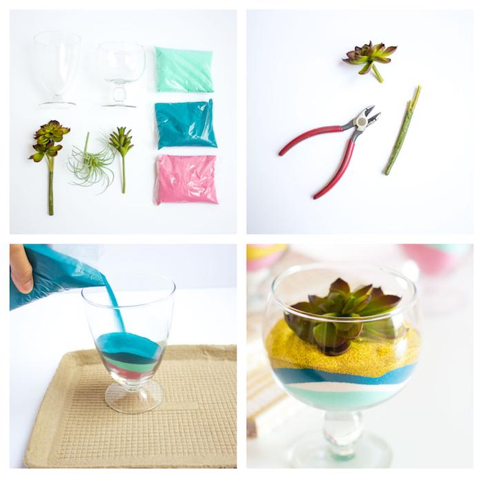 petit terrarium plante succulente en verre avec du sable coloré et tige de fleur pur decorer sa maison, activite manuel
