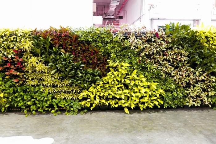 séparation d'espaces avec une cloison végétale avec des plantes en vert réséda, en vert foncé et en rouge, sol recouvert de dalles imitant le marbre