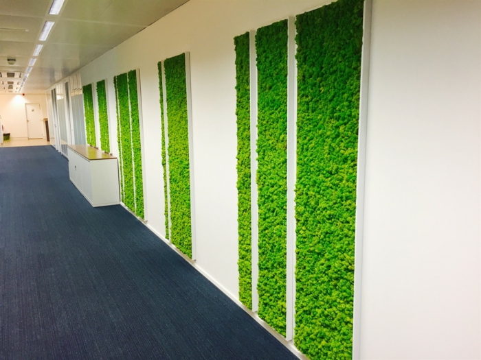 mur végétal intérieur, panneaux verticaux rectangulaires avec de la mousse verte, couloir en longueur avec des murs blancs et sol recouvert de parquet encastrable en gris anthracite