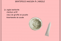 Fabriquer son dentifrice maison – 15 recettes faciles pour prendre soin de ses dents au naturel
