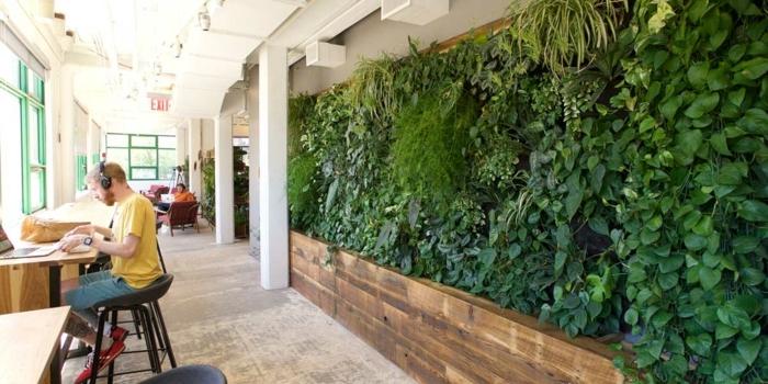 mur végétalisé dans un local, bibliothèque avec des étudiants, de la végétation verte sur toute la largeur des murs, salle lumineuse