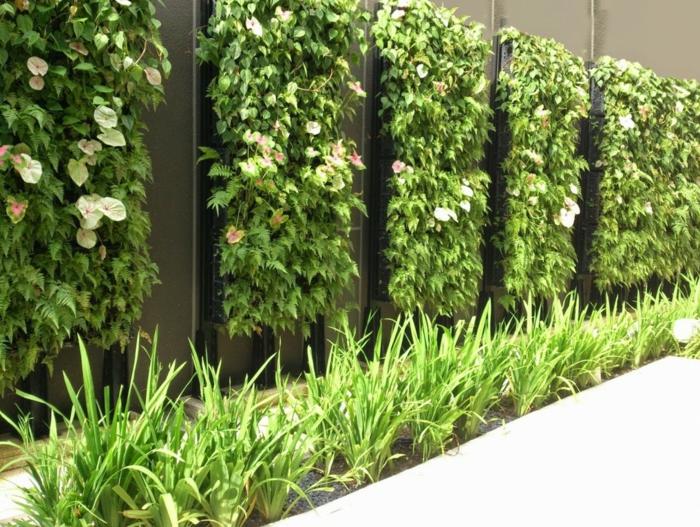 six colonnes de plantes vertes rampantes avec des fleurs couleur crème, cloison végétale, jardin vertical, mur végétalisé, colonne horizontale d'herbe verte devant les colonnes de fleurs vericales