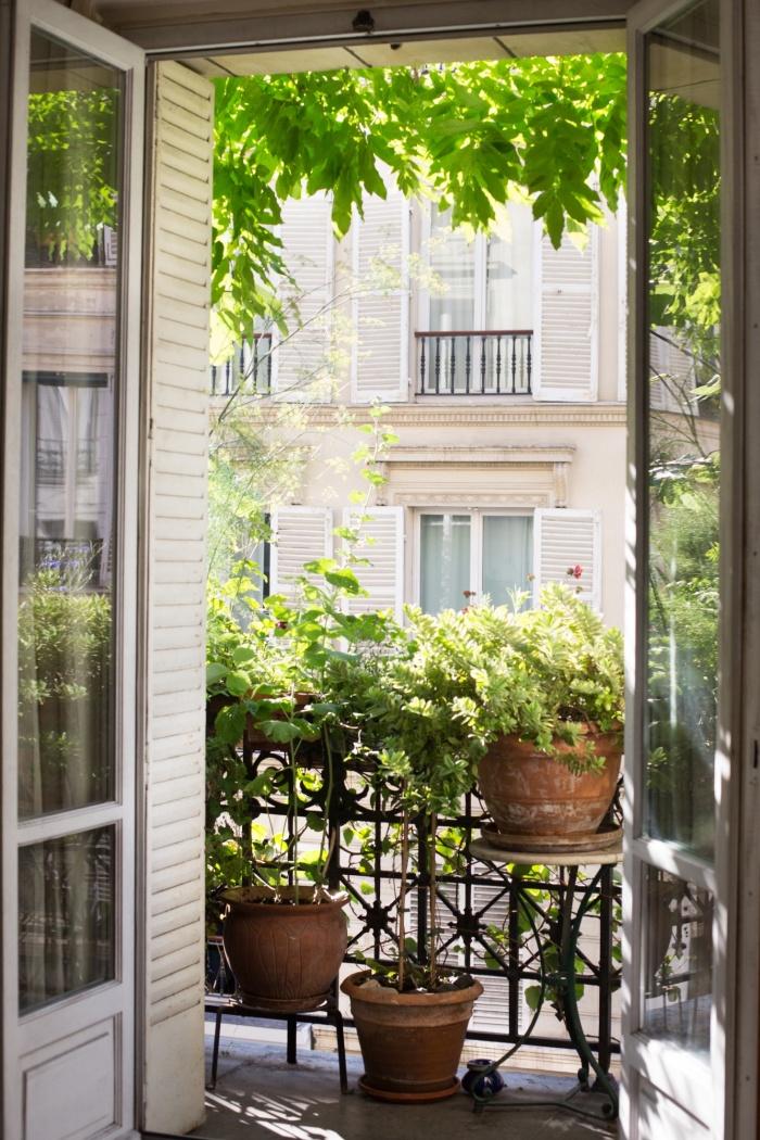 idee brise vue terrasse facile à faire soi-même, exemple de déco de petit balcon avec gros pots en terre cuite et plantes