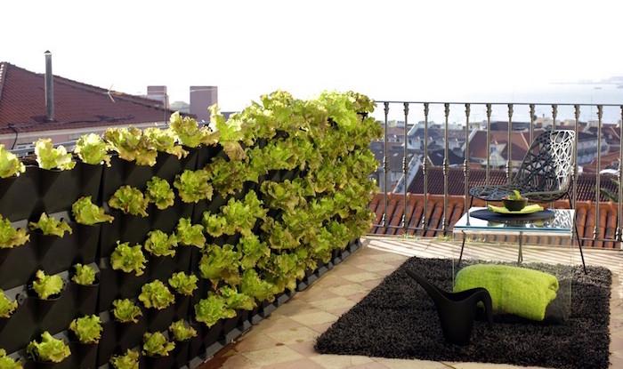 grande jardiniere de balcon suspendue à la rambarde comme brise vue terrasse