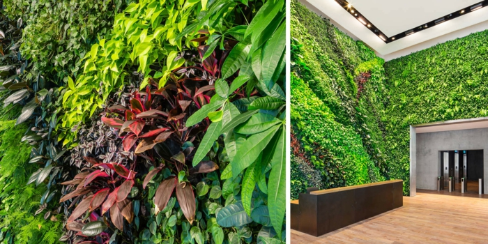 culture verticale dans un édifice, motifs de lignes ondulantes en plantes vertes et rouges, mur végétalisé, musée, salle d'expositions