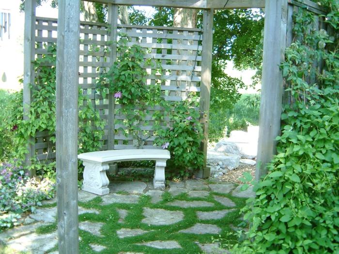 jardin vertical sur un mur en bois grisâtre, pergola de pavillon de jardin, sol recouvert de grandes pierres grises entourées d'herbe verte, mur vegetal exterieur, mur végétalisé