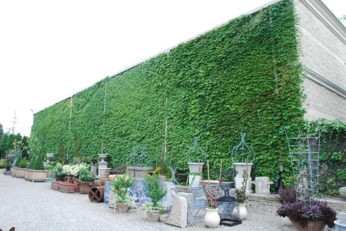 mur vegetal exterieur d'un grand édifice de production de poterie et de vases de pierre, jardin vertical, murs gris clair, mur végétalisé