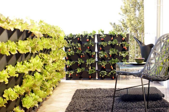 mur de jardinière avec plante brise vue terrasse pour cacher le balcon avec potager