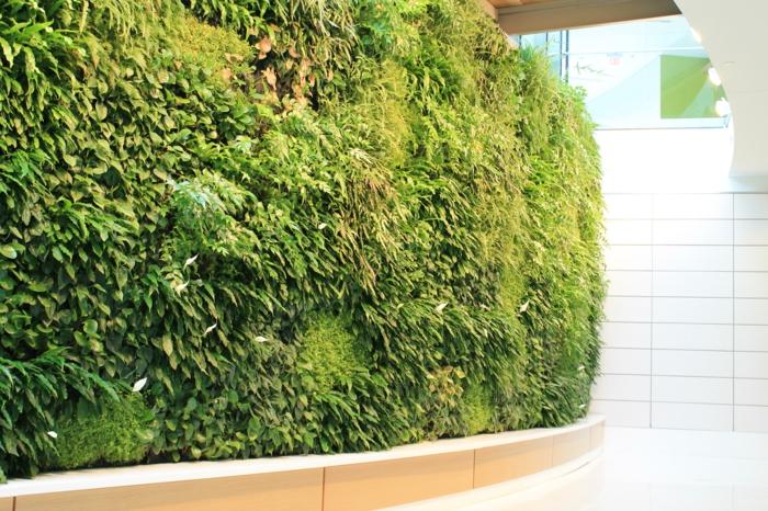 mur végétal intérieur cloison végétale, jardin vertical, couloir en forme de spirale avec le mur vert, carrelage mural en dalles blanches