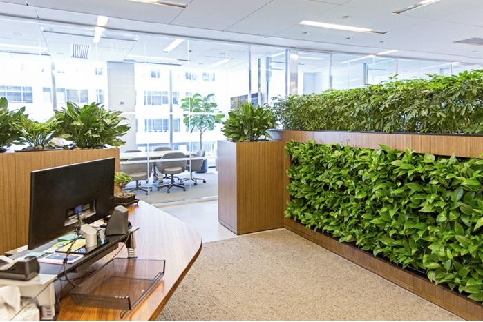 haie brise vue sans entretien pour séparation de bureaux dans open space intérieur