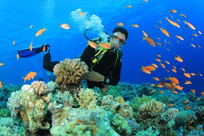 Cadeau homme original choisir un cadeau pour homme adorable idée comment le surpriser offrir un experience plonger dans l ocean