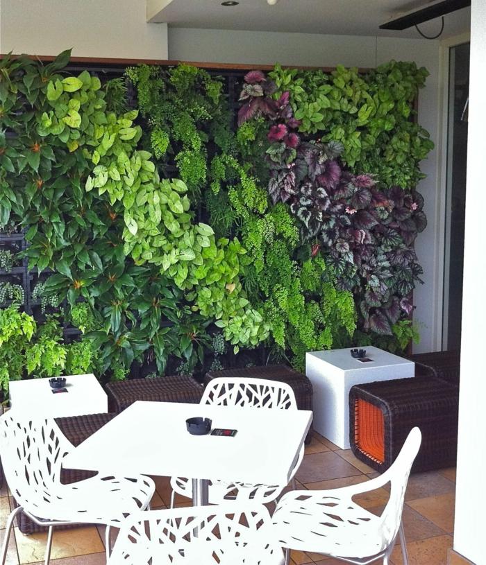 cloison végétale, grand panneau en plantes rouges et vertes, feuilles luisantes, salon de jardin avec quatre chaises en plastique blanche ajourée, table blanche carrée