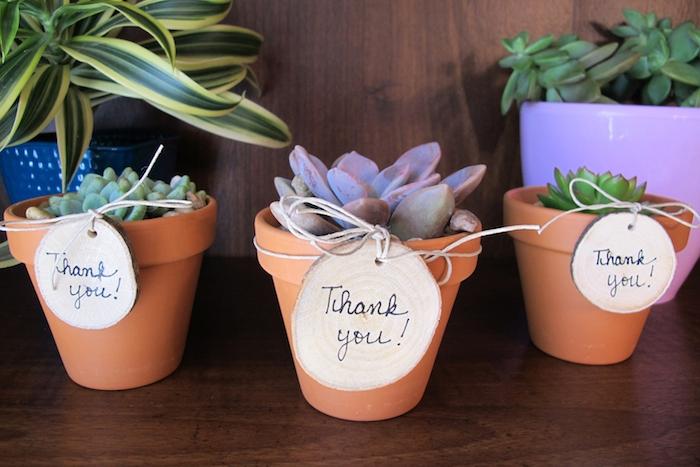 pot de fleur en terre cuit avec une plante succulente à l intérieur et rondin de bois avec remerciement maitresse comme cadeau fin d année