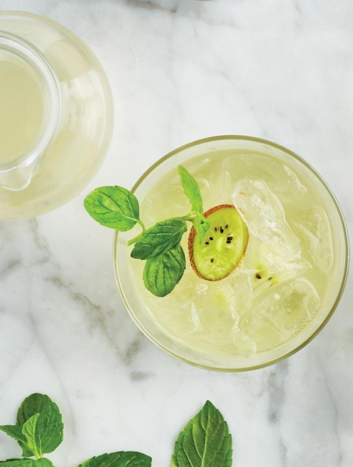 idée comment préparer une boisson fraiche avec de l'eau et jus de citron et kiwi, garnir limonade avec feuilles d'herbes fraîches