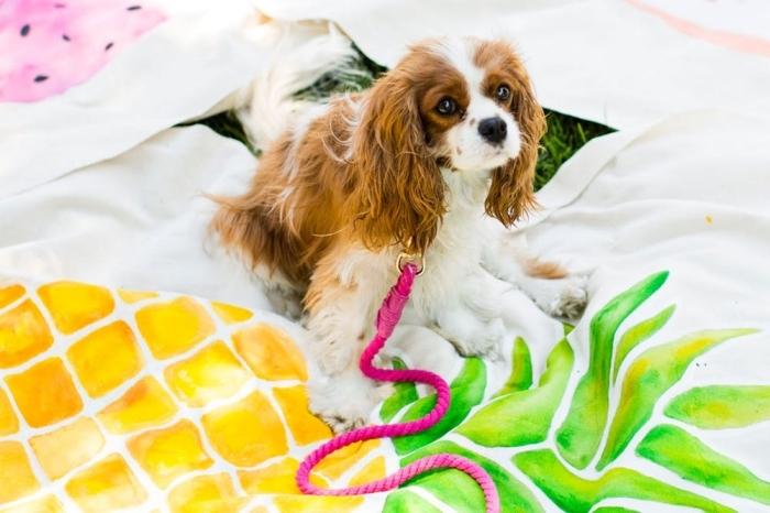 idée comment faire un accessoire pour animaux domestique, modèle de laisse chien en corde à design ombré rose
