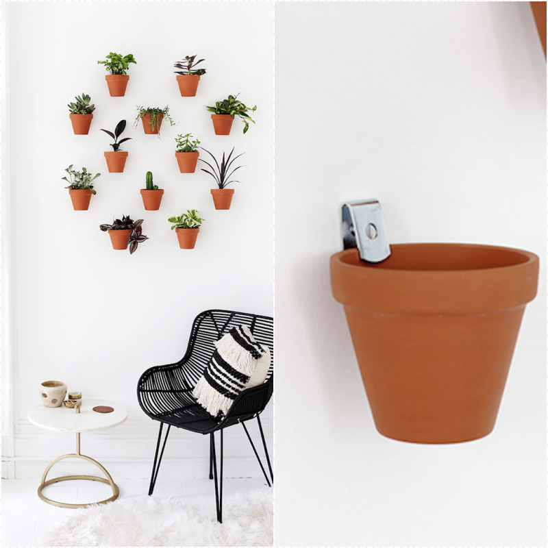 Decoration salon contemporain idée aménagement salon cosy déco séjour déco murale plantes vertes