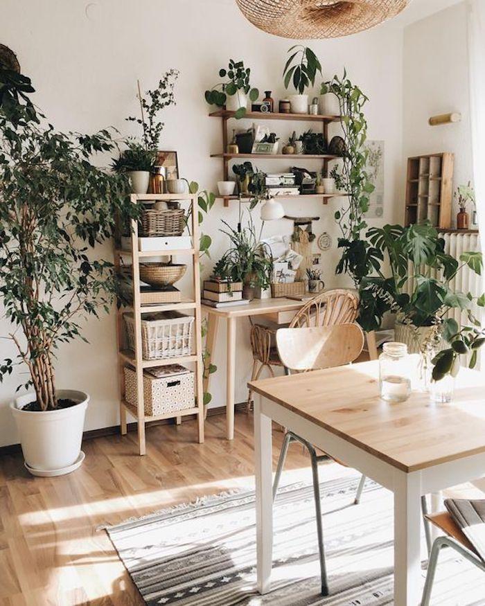 Amenagement salon salle à manger 30m2 séjour cosy et fonctionnel bois et beaucoup de plantes vertes