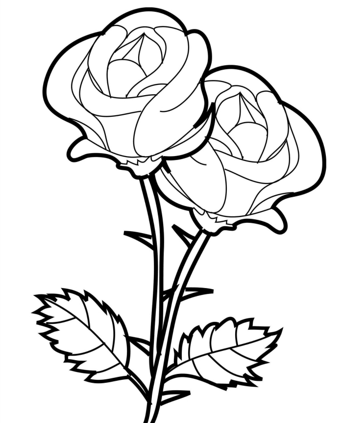 modèle de rose blanc et noir à imprimer et colorer, idée comment faire un dessin de fleur facile en blanc et noir