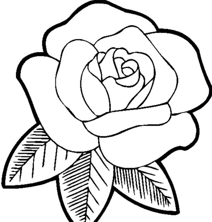 modèle de dessin de fleur à imprimer et colorer, exemple comment faire une rose facile blanc et noir, dessiner une rose facile