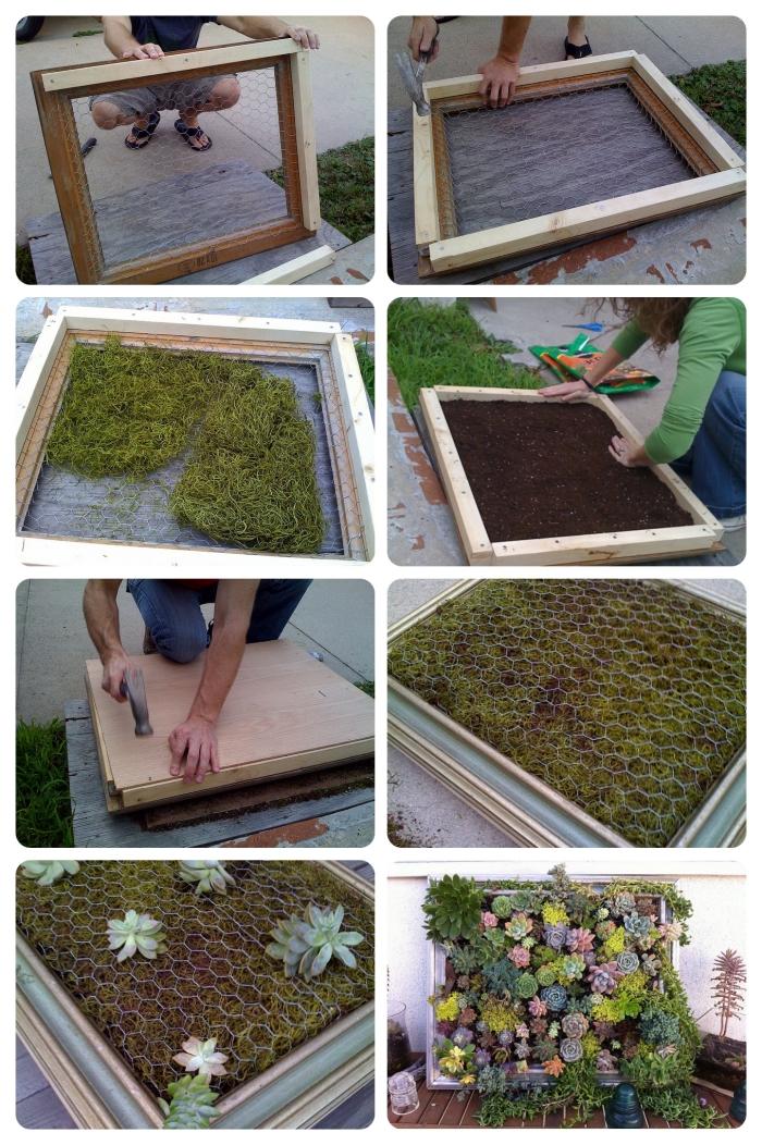 comment construire un tableau vegetal de succulentes, un cadre végétal diy pour l'intérieur aussi bien que l'extérieur