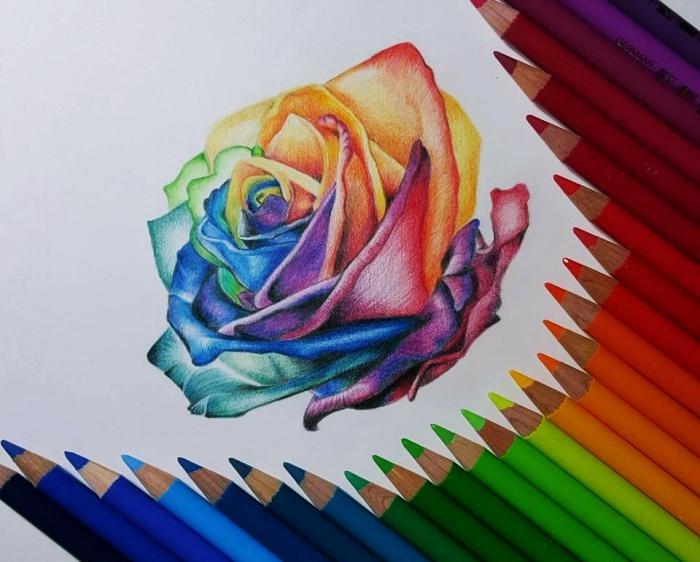dessin fleur facile à colorer aux crayons, apprendre à dessiner une rose au crayon multicolore, joli dessin de rose