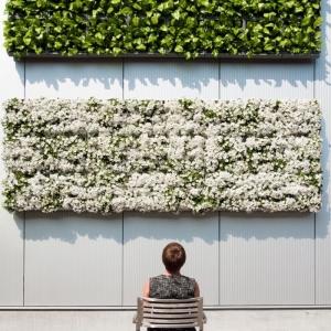 Mur végétal extérieur - 80 idées originales pour l'aménagement de votre jardin, balcon ou terrasse