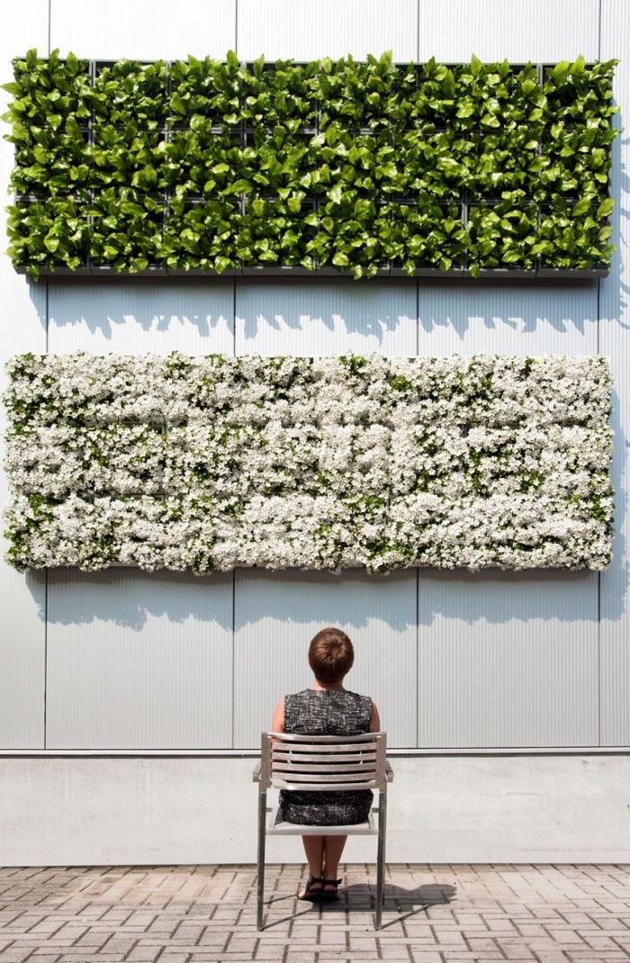 conseils pratiques et inspirations pour mettre en place un mur végétal extérieur dans son jardin ou sur les murs du balcon