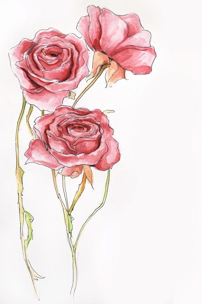 magnifique modèle de dessin rose facile en couleurs aquarelles, idée pour un dessin de rose ouverte rouge, modèle de dessin à reproduire