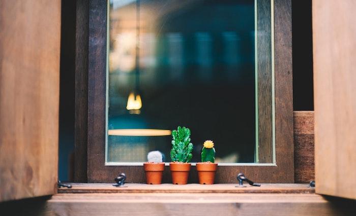 Aménagement chambre 10m2, les meilleures idées pour une cocooning déco de petite chambre adulte, petits cactuses verts sur la fenêtre