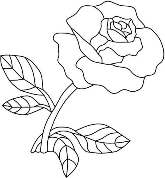 modèle de dessin de fleur à colorer, exemple de dessin facile à reproduire, idée comment faire une rose ouverte au crayon