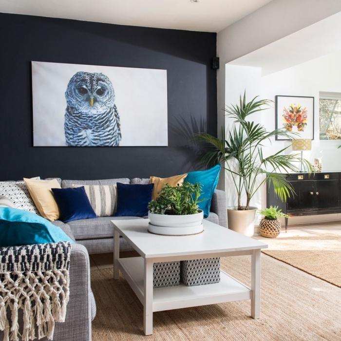 mur de fond bleu foncé qui délimite l'espace séjour et crée deux espace distincts
