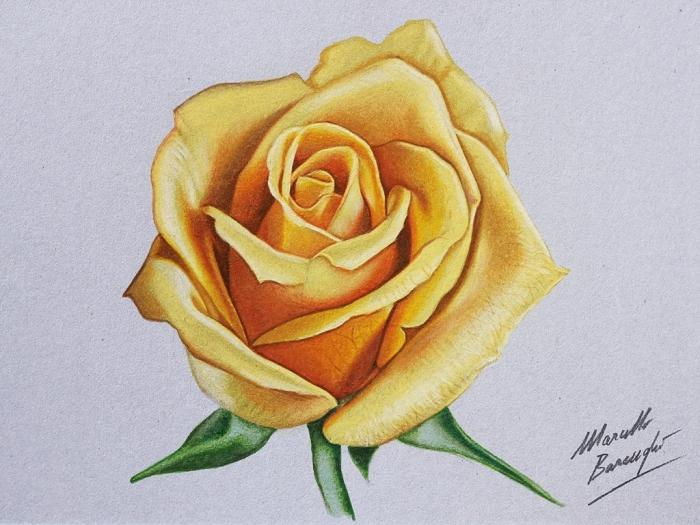 1001 mod les et conseils pour apprendre comment dessiner une rose. Black Bedroom Furniture Sets. Home Design Ideas